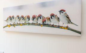 Photo of Sparrow Barn