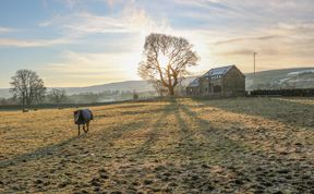 Photo of Briar Barn