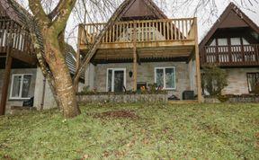 Photo of Treehouse Lodge