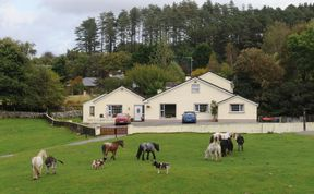 Photo of O Donovans Muckross Riding Stables