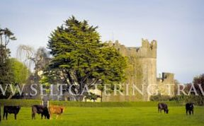 Photo of Killiane Castle Country House & Farm