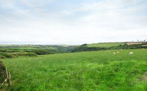 Photo of Shears