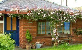 Photo of Wychwood Pet-Friendly Cottage