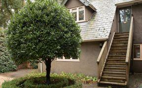 Photo of Kestrel Lodge Family Cottage